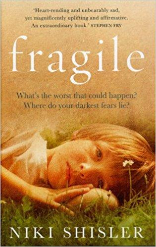 Book Jacket Fragile by Niki Shisler